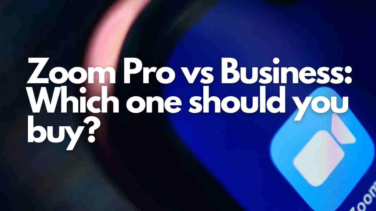 Zoom Pro vs Business