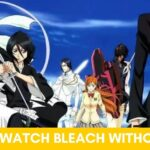 How to Watch Bleach Without Filler